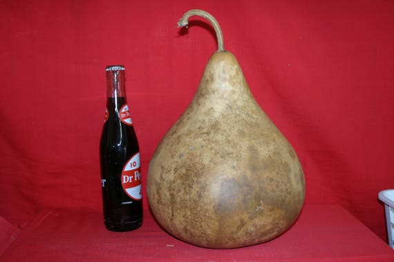 3 -  9 inch  Martin Gourds ( Dried & Cleaned)