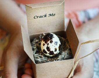 Pregnancy Announcement - Gender Reveal - Baby Announcement - Grandparent announcement - Baby Shower Invitation -Quail Egg