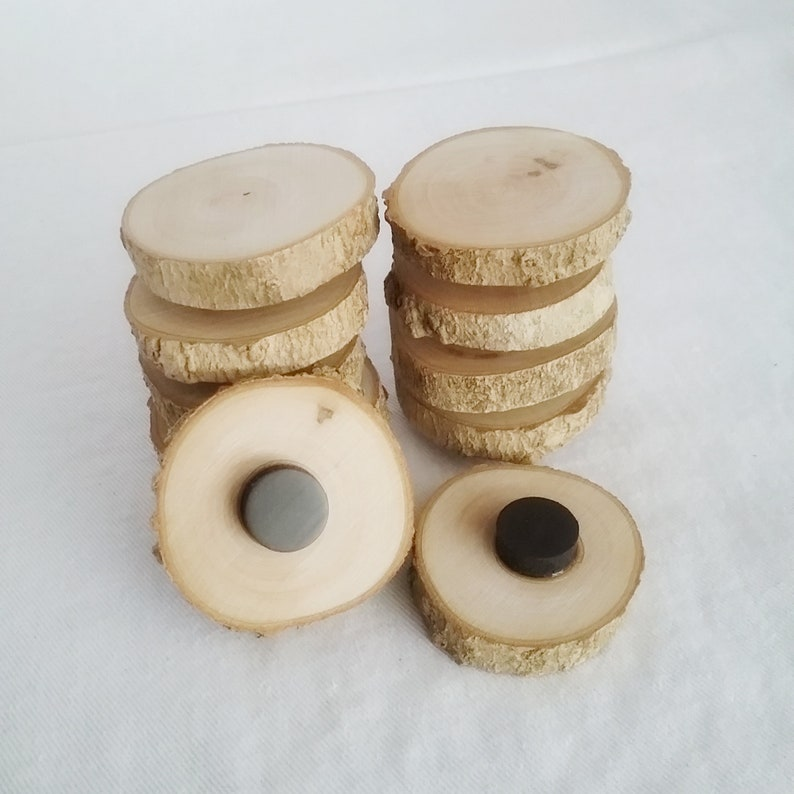 10 Maple Wood Magnets Rustic Tree Branch Home Decor image 0