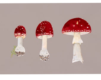 Three Toadstools, limited edition fine art print by Tai Snaith.