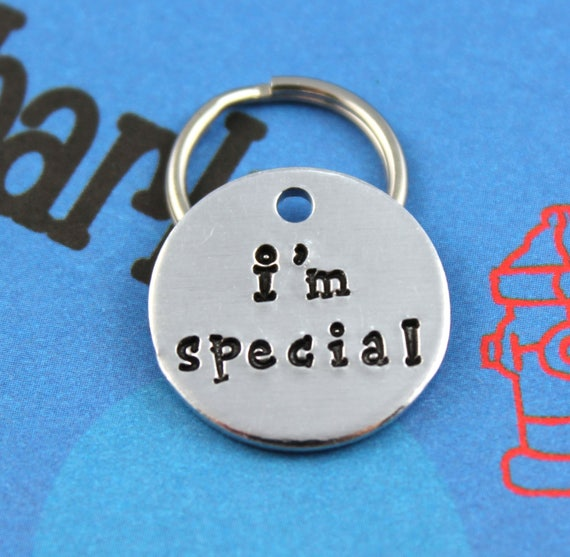 Dog Tag Cat Tag Aluminum Dog Tag Small Cat Tag Small Oval Hand Stamped Pet Tag Custom Pet Tag I/'m Chipped