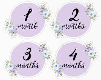Lavender Blue Baby First Year Monthlies + Freebies! Baby Month Stickers, Monthly, Milestone Tracker