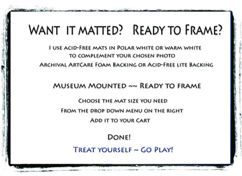 Upgrade: Add A Mat, Ready to Frame, You Choose Size, White, Light Cream,  Acid-Free, Standard Frame Sizes