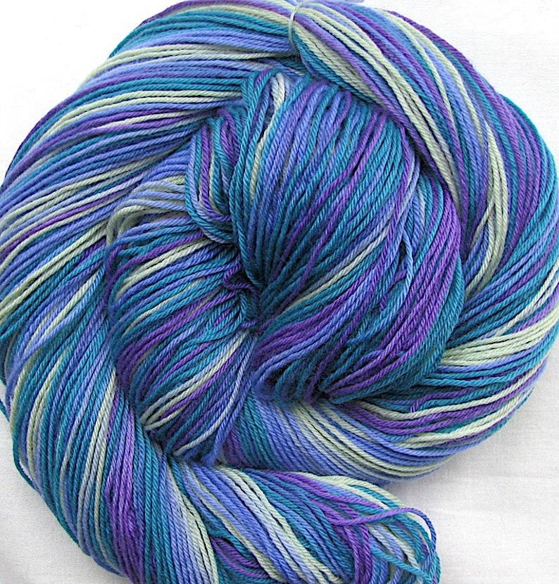 Superfine SW Merino/Nylon Hand Painted Yarn image 0