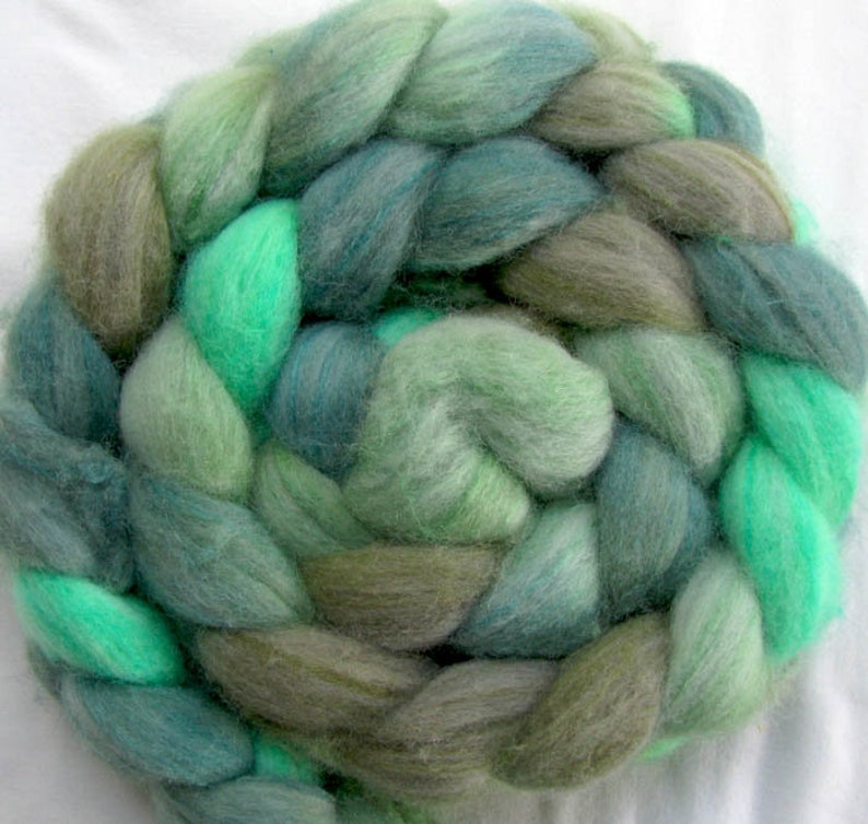Polwarth Wool Spinning Fiber Hand Painted image 0