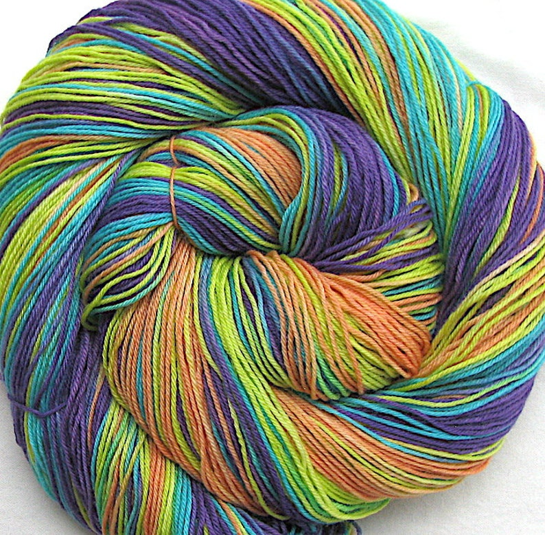 Superfine SW Merino/Nylon Hand Painted Yarn image 0