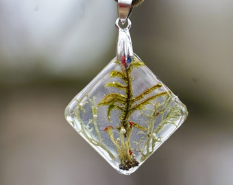 Moss lichen necklace Woodland Botanical necklace jewelry Birthday gifts Cottage chic Rustic real moss jewelry Gift for her Crystal necklace