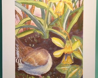 Mourning Dove Hummingbird Bee & Narcissus Archival Print, by Michelle Kogan, Giclee, Art and Collectibles, Birthday, Anniversary Nature