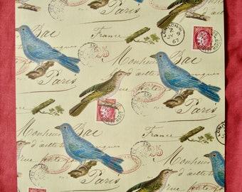 BIRDS Vintage Paris Gift Wrap Sheet 1890s Art Nouveau Gift Kingfishers and Flowering in Umbel