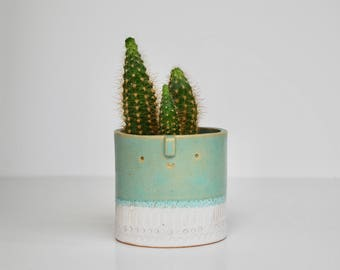 Small succulent pot//green + white