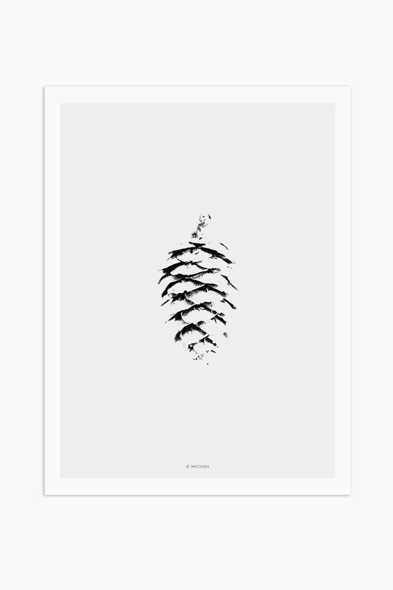 botanical print black and white Minimalist pine cone print