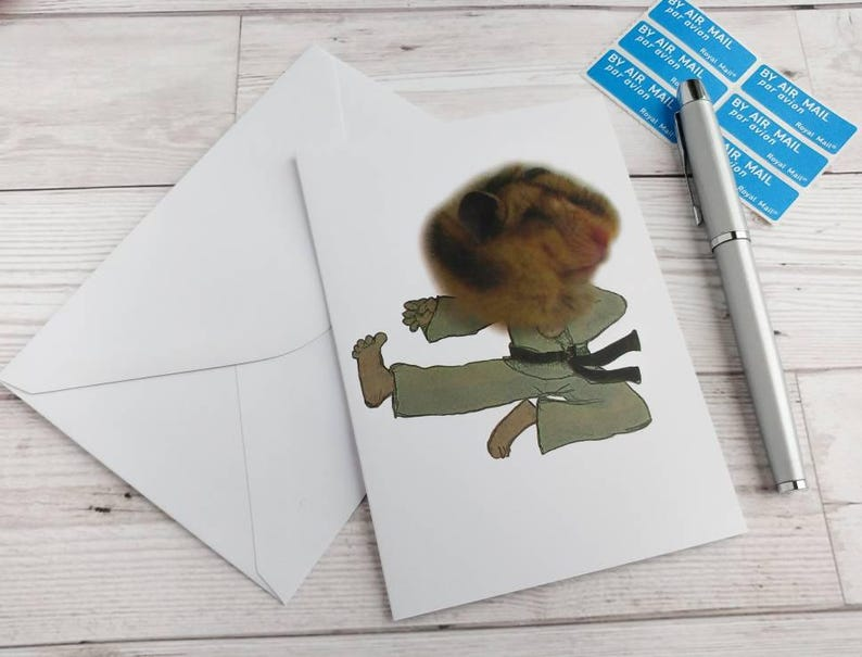 Karate Hamster Card Birthday Kung Fu Martial Arts Greetings image 0