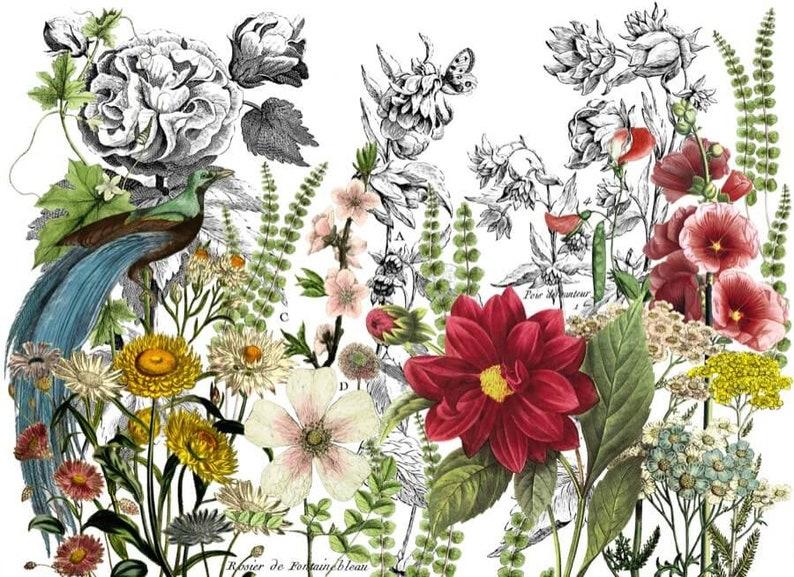 Midnight Garden Decor Transfer/™