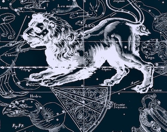 Sign of the zodiac, Zodiac, Constellation, Constellation print, Constellation of, 102