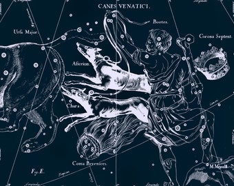 Constellation of Canes Venatici, Zodiac, Sign of the zodiac, Constellation, Constellation print, 27