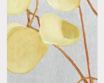Large Art Print:  Milkweed on Pale Grey