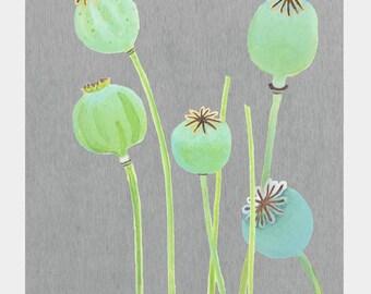 Print:  Poppy Pods on Grey