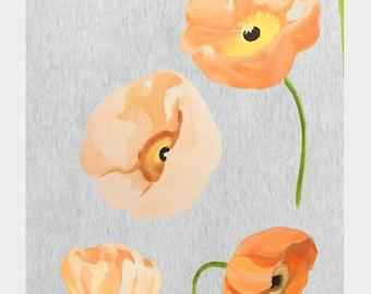 Print:  Peach Poppies on Grey