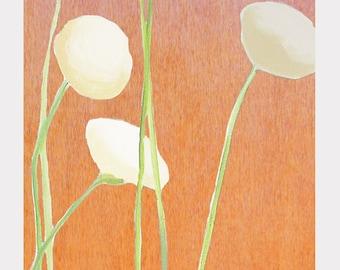 Print:  Cream Flowers on Orange