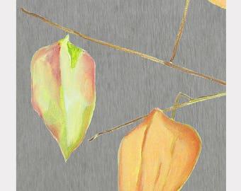 Large Art Print:  Lanterns on Grey