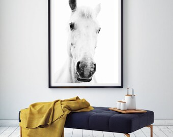 White horse portrait photography,Horse Art,black and white,horse photography wall art,white horse art,horse print,white horse photo