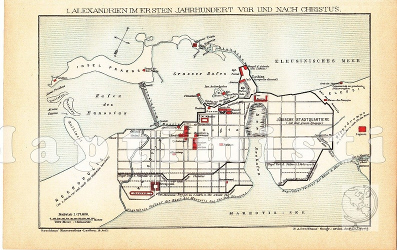 1898 City Map Of Ancient Alexandria Egypt In The 1st Century Etsy