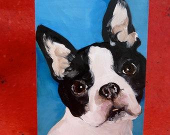 "Boston Terrier Oil Painting  5""x7"""