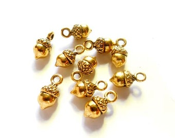 10 Antique Gold Acorn Charms - 20-S-16
