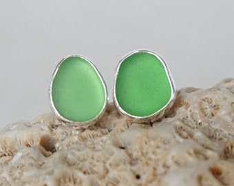 Kelly Green Sea Glass Stud Earrings