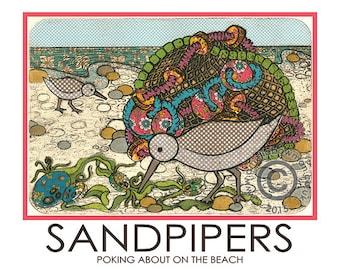 Sandpipers A5 Postcard Fishing Nets Seaweed Beach