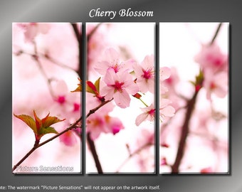 Framed Huge 3 Panel Cherry Blossom Sakura Giclee Canvas Print - Ready to Hang