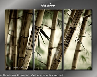 Framed Huge 3 Panel Feng Shui Bamboo Giclee Canvas Print - Ready to Hang