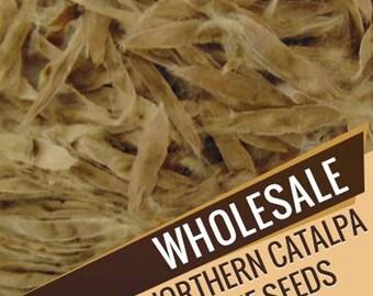 Wholesale Northern Catalpa Tree Seeds, Catalpa Speciosa