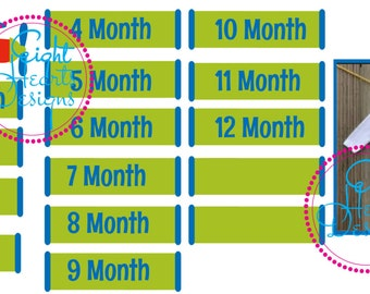 Airplane Monthly Onesies all Twelve Months for one price for Cricut or Silhouette SVG or .Studio on Vinyl HTV Cardstock