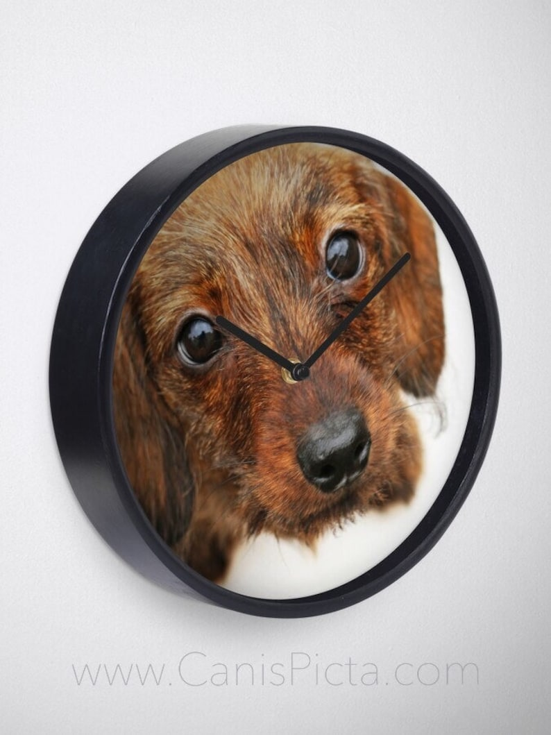 Dachshund Puppy all Clock Wood Black White Frames Gift Unique image 0