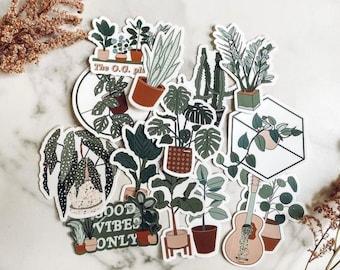 3 Plant Stickers Mix & Match Bundle, Glossy Coated vinyl Die Cut Sticker, HousePlant Sticker, Plant Sticker, Laptop Sticker