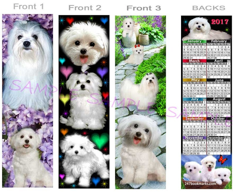 MALTESE 2019 or 2020 CALENDAR BOOKMARK, White Dog Puppies Poodle Terrier  Mix, You get All 3(2 Sizes offered)Book Card Art Artist Keepsake