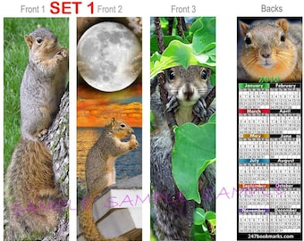 3 Set/Lot-SQUIRRELS 2018 / 2019 CALENDAR BOOKMARK, You get All 3 (2 Sizes offered) Red Ground Tree Gray Squirrel Card Art
