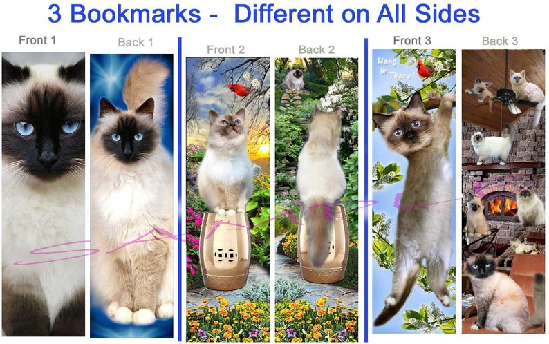 3 Lot/Set-CAT Breed BOOKMARK BIRMAN Ragdoll Himalayan Long Hair Siamese  Kitten Fun Art Book Mark Card Figurine ( Ornament for Tree or Wall )