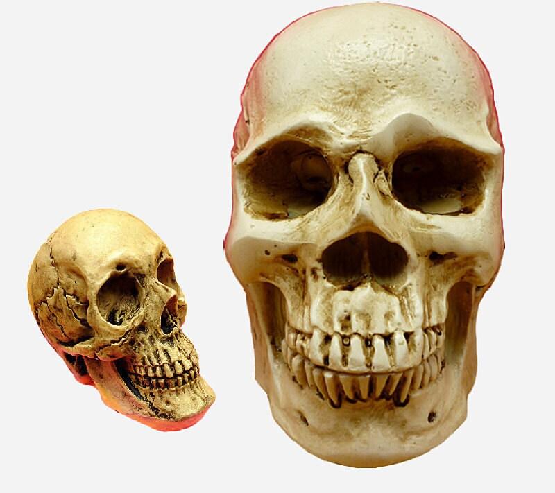 3D big skull fondant cake mold silicone mold chocolate mold | Etsy