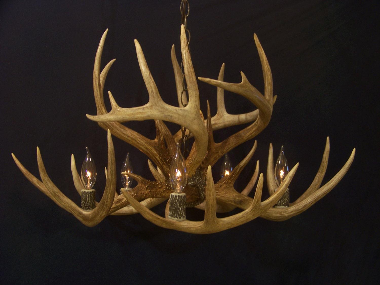 "Legend Antler Designs ""Snowy Summit"" 9 Antler Whitetail Deer Antler Chandelier Light Lamp Fixture"