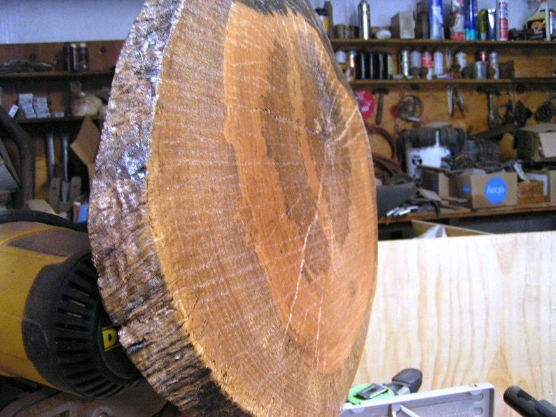 Natural edge tree slab #81 23 12 inches tree slice tree round for projects