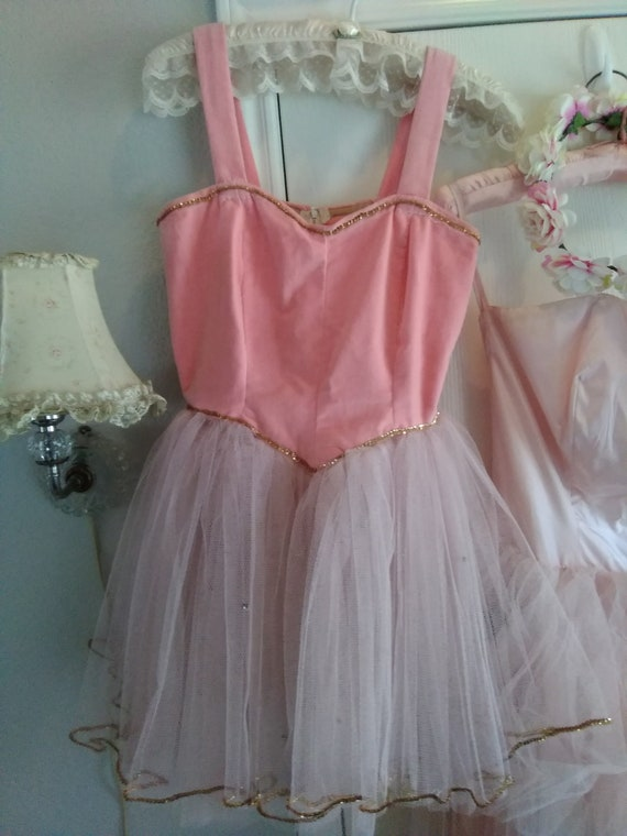 Gorgeous Vintage Pink Velvet and Tulle Ballet Cost