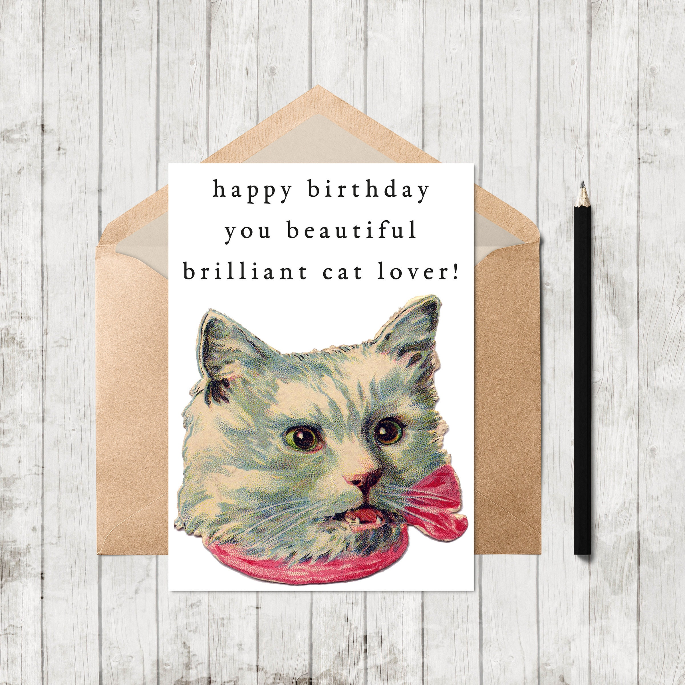 Funny Birthday Card Cat Lover Kids Printable Retro