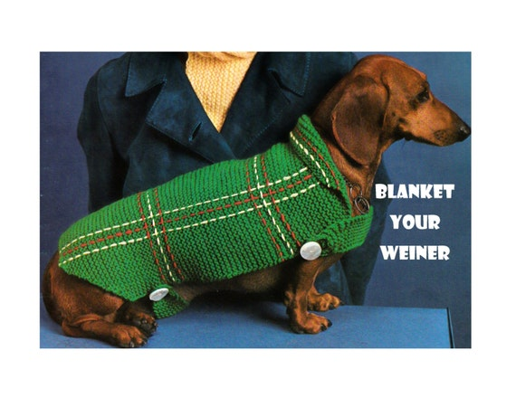 Digital Download Cozy Knit Dachshund Sweater Pattern Fun Etsy