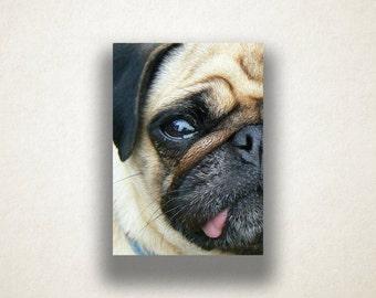 Pug Face Canvas Art, Pug Close Up Wall Art, Dog Canvas Print, Artistic Wall Art, Photograph, Canvas Print, Home Art, Wall Art Canvas