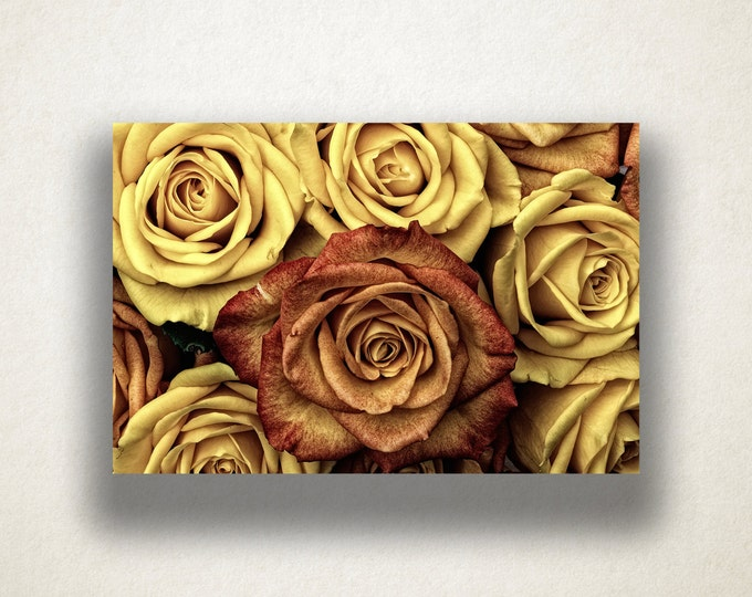 Antiqued Roses Canvas Art Print, Vintage Rose Wall Art, Flower Canvas Print, Close Up Wall Art, Canvas Art, Canvas Print, Home Art, Wall Art
