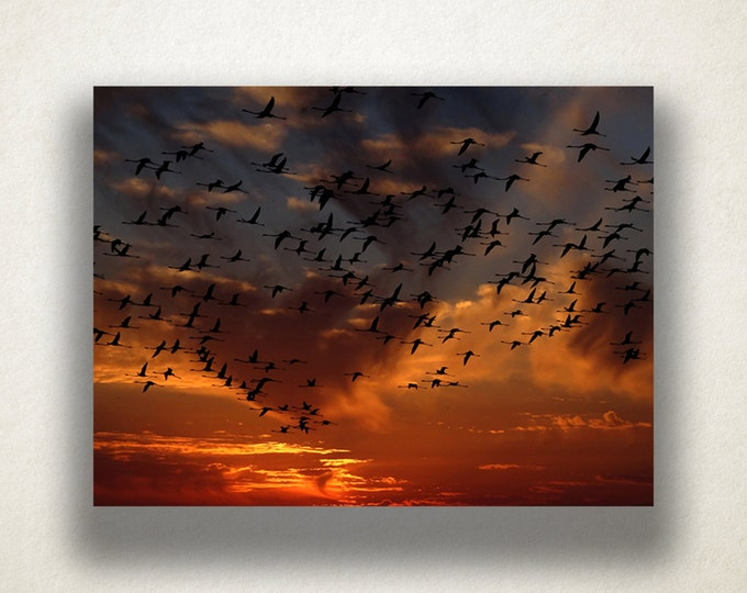 Sunset Sky Canvas Art, Bird Wall Art, Dusk Sky Canvas Print, Beautiful Sunset Wall Art, Photograph, Canvas Print, Home Art, Wall Art Canvas