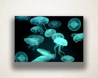 Neon Jellyfish Canvas Art, Jellyfish Wall Art, Ocean Canvas Print, Close Up Wall Art, Photograph, Canvas Print, Home Art, Wall Art Canvas