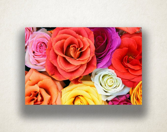 Multicolor Roses Canvas Art, Roses Wall Art, Flowers Canvas Print, Close Up Wall Art, Photograph, Canvas Print, Home Art, Wall Art Canvas